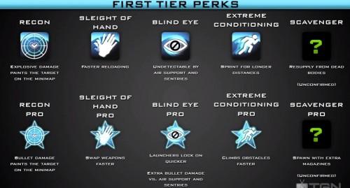Luna's Rankings: Favorite Call of DutyPerks!