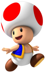 Toad-0